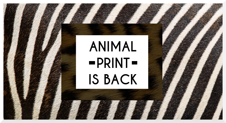 Πώς να φορέσεις το animal print σωστά.